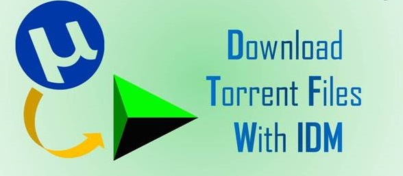 internet download manager with crack version torrent